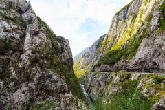 Mattina in montagne Tara River Canyon, parco nazionale di Durmitor, Montenegro Fotografia Stock Libera da Diritti