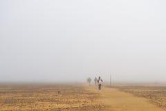 Mattina nebbiosa all'incrocio alpino di Tongariro, le grande camminano in isola del nord, Nuova Zelanda Immagini Stock