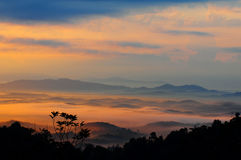 Mattina nebbiosa alla collina di panorama. Immagine Stock Libera da Diritti
