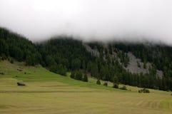 Mattina nebbiosa in alpi svizzere Immagine Stock Libera da Diritti