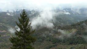 Mattina nebbiosa in anticipo nelle alpi stock footage