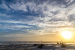 Mattina nebbiosa della spiaggia fotografia stock libera da diritti