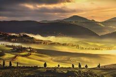 Mattina nebbiosa della Toscana, terreno coltivabile ed alberi di cipresso L'Italia immagine stock