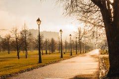 Mattina nebbiosa di autunno nel parco fotografia stock