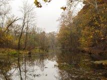 Mattina nebbiosa di caduta nel Missouri fotografie stock libere da diritti