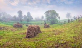 Mattina nebbiosa di estate in paesino di montagna fotografie stock libere da diritti