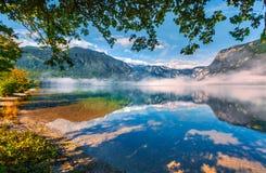 Mattina nebbiosa di estate sul lago Bohinj Fotografie Stock