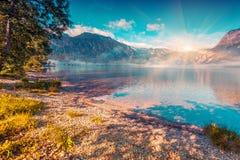 Mattina nebbiosa di estate sul lago Bohinj Immagini Stock
