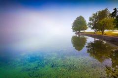 Mattina nebbiosa di estate sul lago Bohinj nel parco nazionale di Triglav Immagini Stock Libere da Diritti
