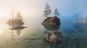 Mattina nebbiosa di estate sul lago Hintersee in alpi austriache Immagine Stock