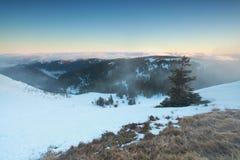 Mattina nebbiosa di inverno sulla cima della montagna Fotografie Stock Libere da Diritti