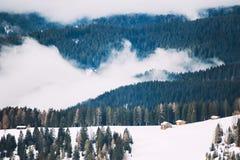 Mattina nebbiosa in dolomia di inverno, l'Italia Immagine Stock Libera da Diritti