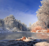 Mattina nebbiosa gelida sul rive Fotografia Stock