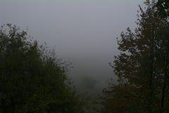 Mattina nebbiosa, il fiume Oka Fotografie Stock Libere da Diritti