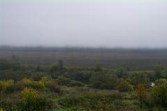 Mattina nebbiosa, il fiume Oka Fotografia Stock Libera da Diritti