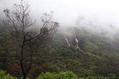 Mattina nebbiosa in montagne, lo Sri Lanka Fotografia Stock