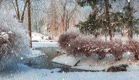 Mattina nebbiosa nel parco della città Fotografie Stock Libere da Diritti