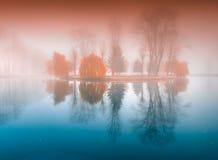 Mattina nebbiosa nel parco di autunno sul lago Fotografia Stock