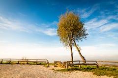 Mattina nebbiosa nella baia di Trieste Fotografia Stock