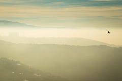 Mattina nebbiosa nella baia di Trieste Fotografia Stock Libera da Diritti
