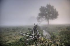 Mattina nebbiosa nella campagna Fotografia Stock
