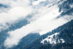 Mattina nebbiosa nelle montagne di inverno Immagine Stock Libera da Diritti
