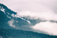 Mattina nebbiosa nelle montagne di inverno Fotografia Stock Libera da Diritti