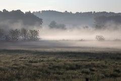 Mattina nebbiosa, Ohio rurale immagini stock