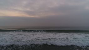 Mattina nebbiosa sopra la spiaggia ed i gabbiani di volo Alba drammatica del mare Onde archivi video