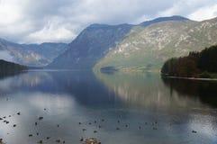 Mattina nebbiosa sul lago Bohinj Immagini Stock