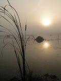 Mattina nebbiosa sul lago Tulchinskom. immagini stock