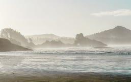 Mattina nebbiosa sul litorale della spiaggia di Chesterman in Tofino, Columbia Britannica Fotografia Stock