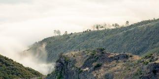 Mattina nebbiosa sul Madera Fotografia Stock Libera da Diritti