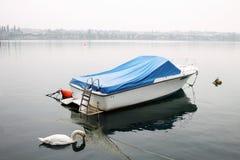 Mattina nebbiosa sulla polizia del lago, cigno, barca, Peschiera del Garda, Italia immagini stock libere da diritti