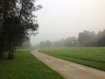 Mattina nebbiosa in un parco Immagini Stock