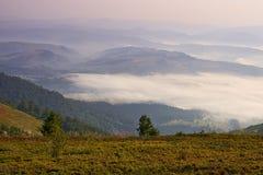 Mattina nei Carpathians Fotografia Stock Libera da Diritti