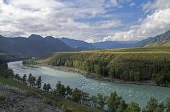 Mattina nella valle del fiume di Katun Montagne di Altai, Russia Fotografia Stock Libera da Diritti