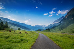 Mattina nelle alpi, Austria, Rauris Paesaggio della natura Immagini Stock Libere da Diritti