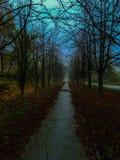 Mattina a novembre fotografia stock libera da diritti