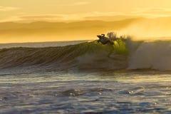 Mattina praticante il surfing dell'onda di azione Immagini Stock