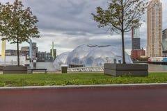 Mattina Rotterdam, Paesi Bassi Fotografia Stock Libera da Diritti
