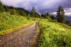 Mattina rurale di inizio dell'estate della strada Fotografia Stock Libera da Diritti