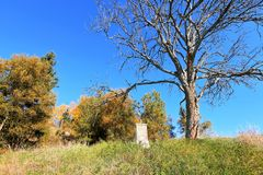 Mattina soleggiata di autunno Immagine Stock Libera da Diritti