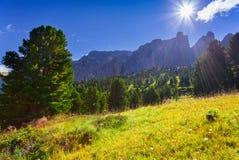 Mattina soleggiata di estate nelle alpi dell'Italia Fotografie Stock Libere da Diritti