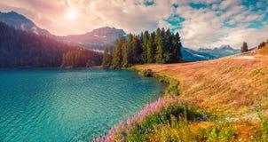 Mattina soleggiata di estate sul lago Hintersee Immagine Stock