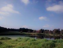 Mattina soleggiata nel lago immagine stock