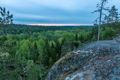 Mattina sopra la foresta della molla Fotografie Stock
