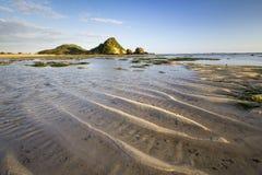 Mattina, spiaggia, roccia e scogliera Immagine Stock