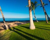 Mattina su una spiaggia tropicale Fotografie Stock
