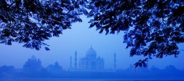 Mattina Taj Mahal Fotografia Stock